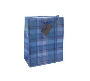 Fashion Blue Grid Shopping Bag