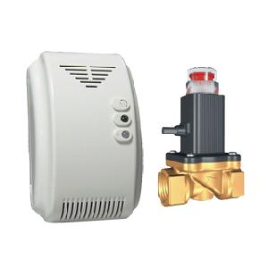 Integrated Gas Detector With Solenoid Valve