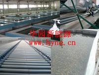 solar cultivation
