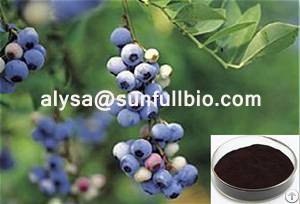 bilberry extract 25
