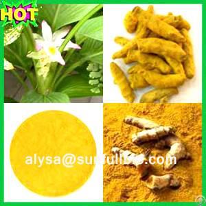 curcumin turmeric extract