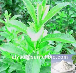 stevia extract steviosides rebaudioside