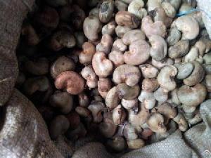 ivory coast raw cashewnuts shell