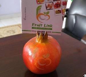 pomegranates egypt fruit link