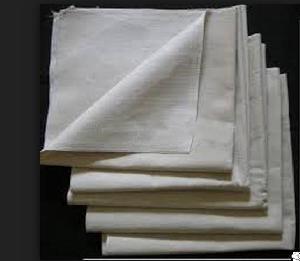 Painter Essential Canvas Drop Sheet