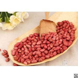 pre pressing leaching peanut