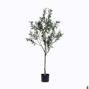 Silk Single Trunk Olive Tree