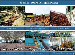 palm oil machine setup processing mill nigeria