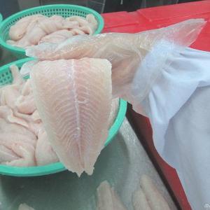 frozen pangasius fillet vietnam