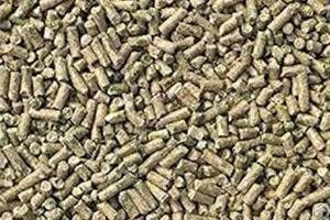 things sheep feed pellets flat die pellet machine