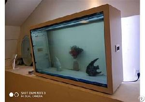Transparent Display Factory Price Transparent Display