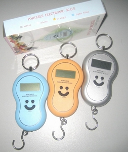 Digital Portable Vegetable Scale, 5kg / 2g, 10kg / 10g, 25kg / 10g, 40kg, With Backlight