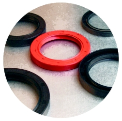 Oil Seal And Rubber Seal