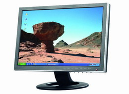 19 Inch Wide Screen Lcd Monitor As 190w