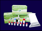 greenspring tm deoxynuvalenol elisa test kit