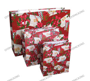 Shinny Red Flower For The Christmas Commercial Paper Bag